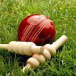 Cricket Doctor